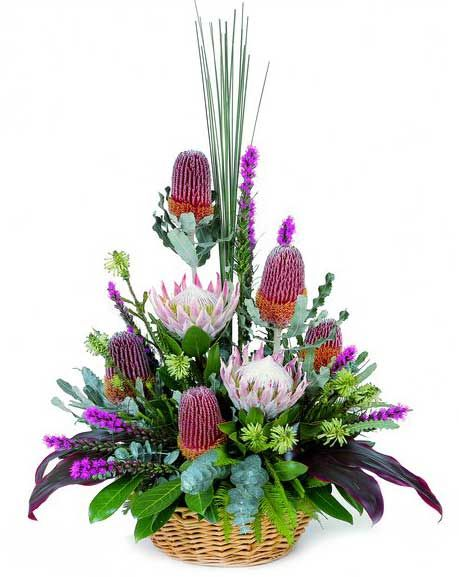 Flower Baskets Sydney : Best images about flowers in basket on