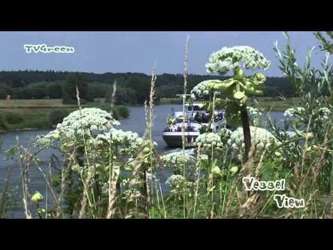 VesselView: Barge Jacob Hessel sailing The River IJssel - YouTube