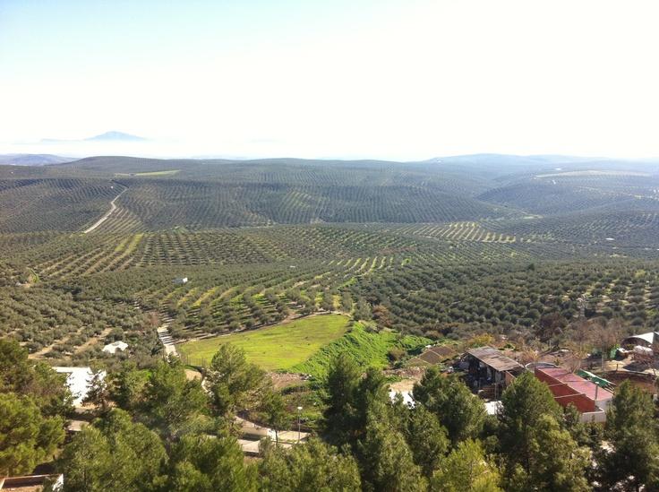 Vistas de mi pueblo desde mi casa #arjona #jaén