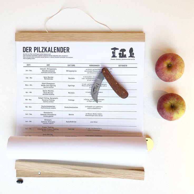 Pilzkalender