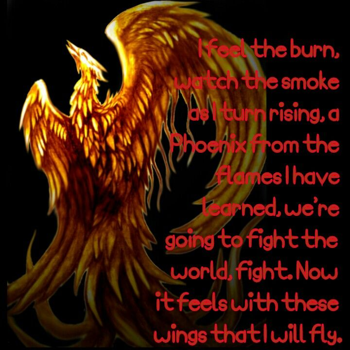 Like a Phoenix rises from the ashes, I will too rise and I ...
