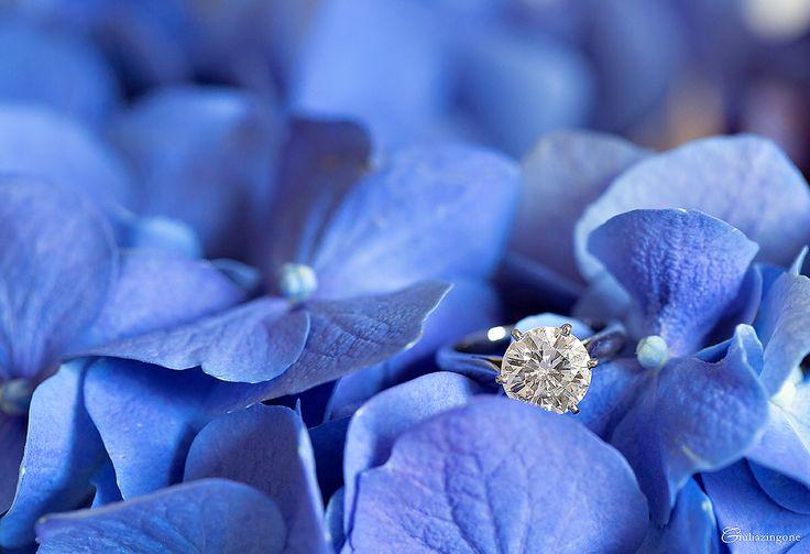 Diamond engagement ring set on a periwinkle hydrangea bouquet at a destination wedding in Italy : anello di fidanzamento fotografato su un bouquet azzurro pervinca ad un matrimonio sul Lago Maggiore