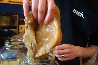Nourished and Nurtured: Kombucha Tea and Vinegar