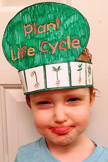 FREE Spring Life Cycle crowns! Butterfly, Frog, Plant, and Praying Mantis crowns!