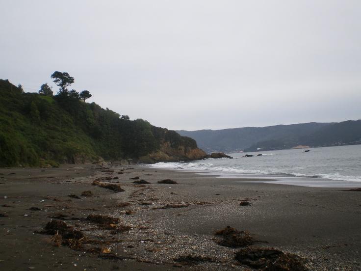 Niebla beach