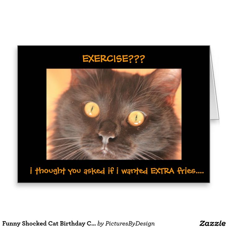 Funny Shocked Cat Birthday Card, front of card says: EXERCISE?? i thought you asked if i wanted EXTRA fries... Inside: happy birthday, i hope you get everything you really asked for!
