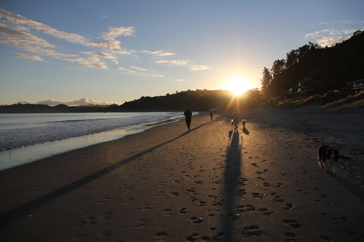 Sunrise Onetangi Beach with walkers. NZ