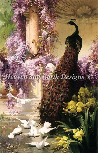 A Peacock And Doves In A Garden Material Pack