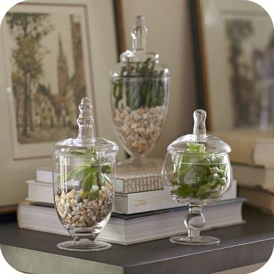 258 Best Glass Apothecary Jars Images On Pinterest Jar