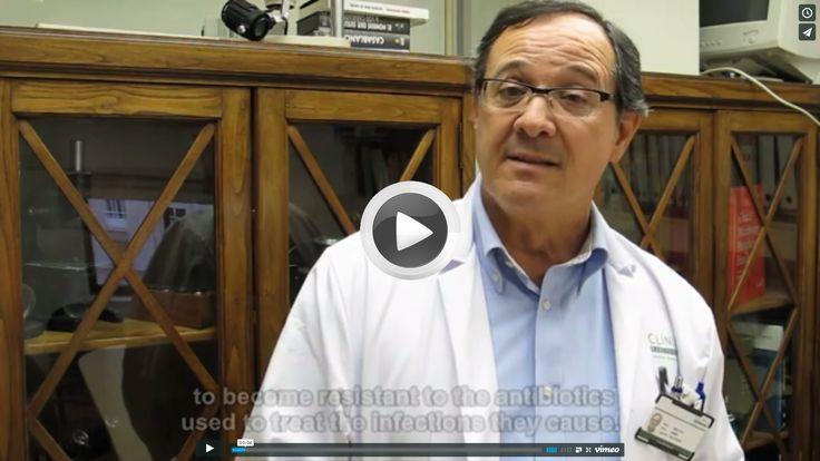 Jordi Vila: Iniciativa de Resistencia a los Antibióticos