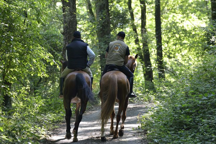 Randonnée à cheval, balade. ©Pascal Baudry pour Sud Vendée Tourisme. Plus d'info : www.sudvendeetourisme.com