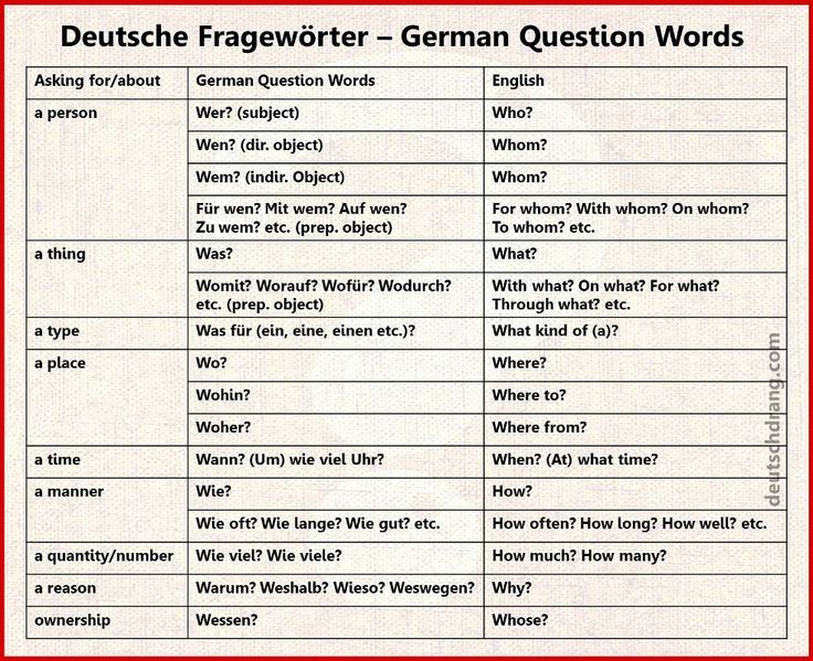 question words 2