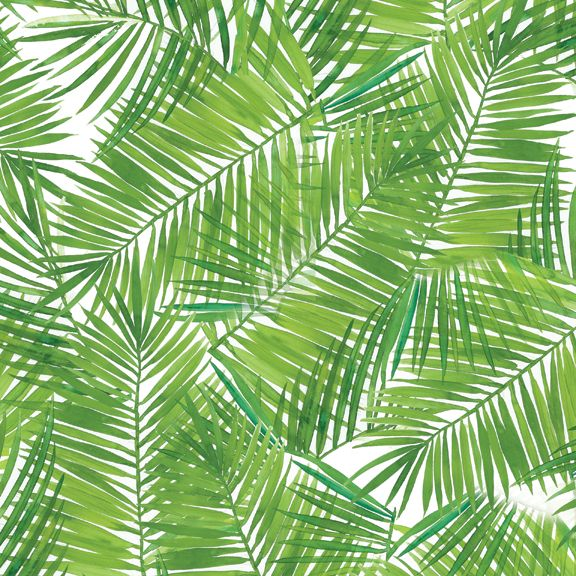 Wallpaper Tropical Patterns