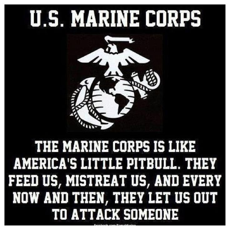 Marines always get compared to Bulldogs, Pit Bulls, Rottweilers, and Dobermans. We protect what we love and we attack anything that threatens it.