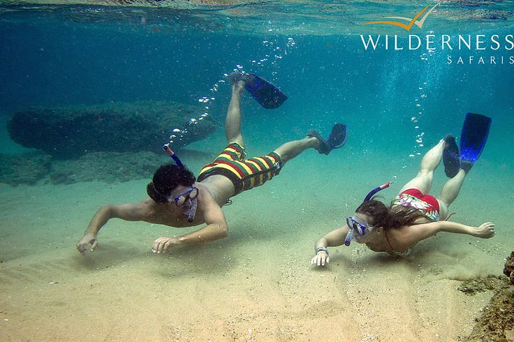 Rocktail Beach Camp - There are some outstanding spots for snorkelling, such as Lala Neck and Black Rock. #Tropical #Safari #Africa #SouthAfrica #WildernessSafaris