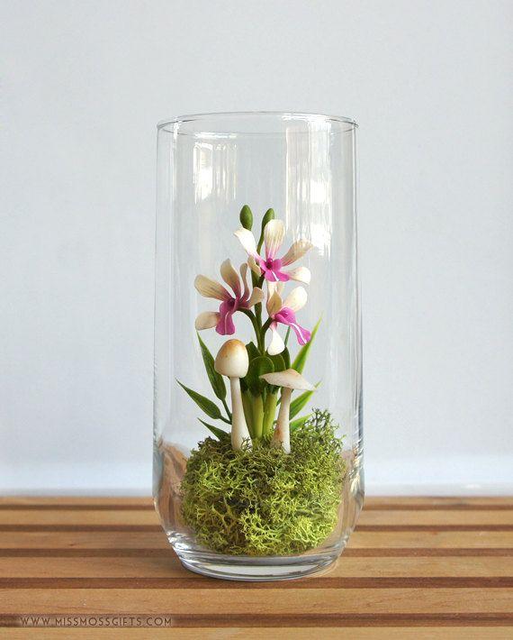 36 best Little Glass House images on Pinterest Orchid terrarium
