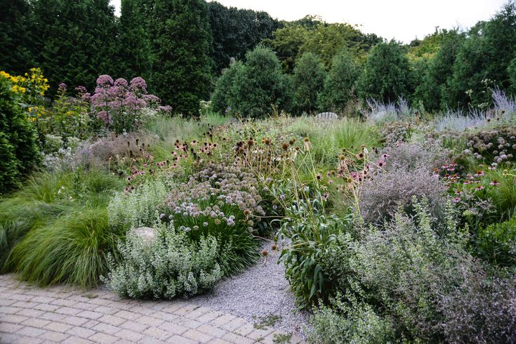 1000 Images About Gardens On Pinterest Chelsea Flower Show Garden Design And Tuin