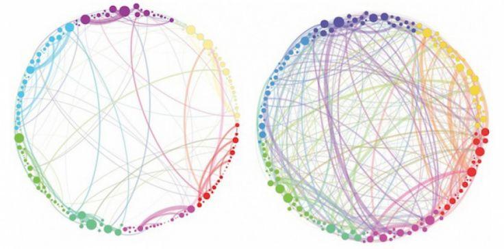 """la psilocybine augmentait l'activité cérébrale dans plusieurs zones distinctes comme celles liées aux émotions, notamment l'hippocampe ou le cortex cingulaire. Ils ont également précisé que la cartographie s'apparentait beaucoup à celle d'une personne en plein rêve et évoquent un phénomène """"d'expansion de l'esprit""""."""