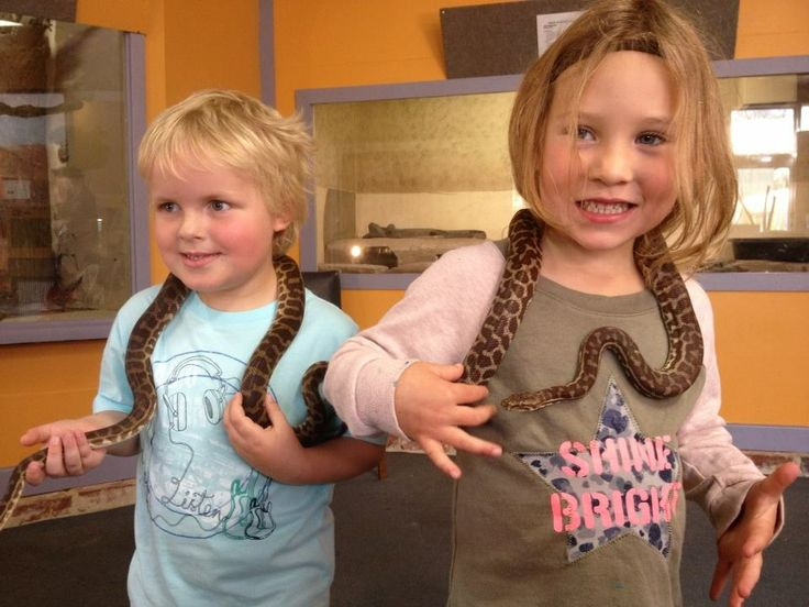 Visit the West Australian Reptile Park in the Swan Valley. Kids will love getting hands on with snakes, Lizards and Dingos. Location: Henley Brook. Suitable for: All ages Cost: Adults $12 Children (aged 3 - 15) $7. Under 3's are free. Read our review here http://www.buggybuddys.com.au/magazine/read/west-australian-reptile-park-swan-valley_452.html