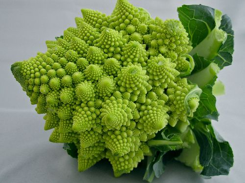 Romanesco Broccoli: an approximate fractal