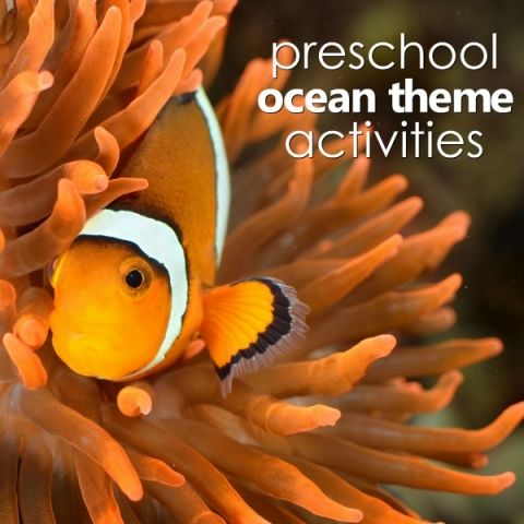 Preschool ocean theme planning guide with printable lesson plans, online activities, and more for teaching preschoolers about ocean