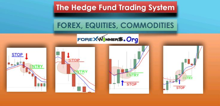 Hedge fund forex trading strategies