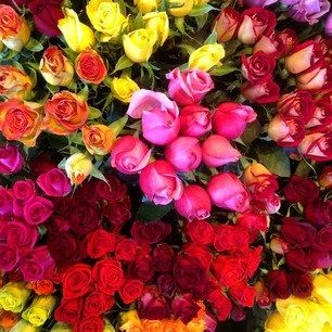 Flowers. Anytime, any occasion. www.artstems.com.au