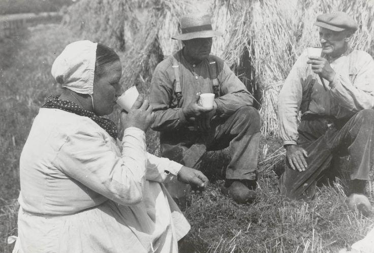 Schafttijd tijdens de roggeoogst 1940-1945 Schafttijd (de vesper) tijdens de roggeoogst. De vrouw is gekleed in speciale oogstdracht: de 'Sint Joapiksdracht', naar Sint Jacobus, de schutspatroon van de oogst en de molenaars. Zijn naamdag op 25 juli luidde de roggeoogst in. #Overijssel #Twente #Saksen