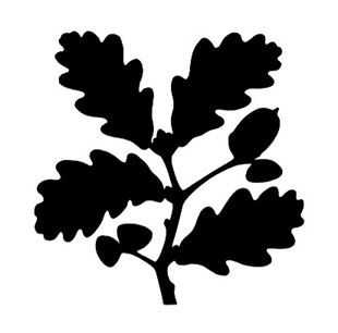 I did not know that David Gentleman designed the new National Trust logo - how about that for a random fact! :)