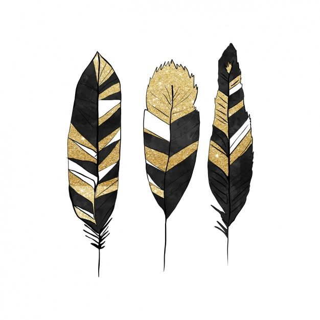 Black and golden feathers design Free Vector