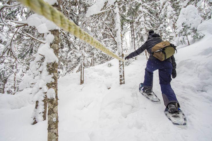 Le Parc régional Montagne du Diable possède un réseau de sentiers de raquettes de 80 km pour votre plus grand plaisir et vos plus belles randonnées d'hiver! Venez découvrir la magnifique forêt protégée de la Montage du Diable.