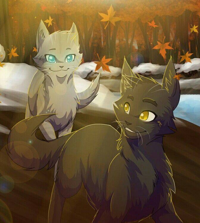 Which Dawn Of The Clans Warrior Cat Are You: 25 Best Images About Warriors Roleplay On Pinterest