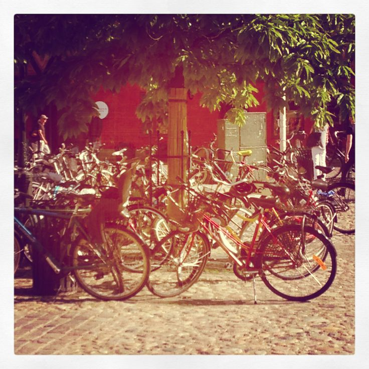 The main mode of transport #bicycles