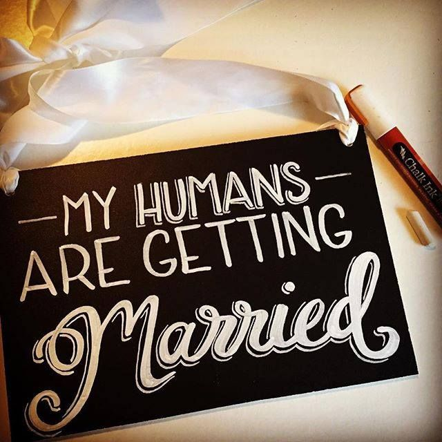 A darling way to get your pups involved in your big day! wedding sign. Engagement shoot. www.chalkink.com