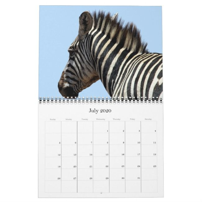 Zebra 2020 Calendar Zazzle Com Mit Bildern