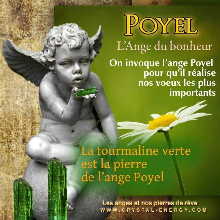 Poyel est l'ange du bonheur Poyel est le grand distributeur de cadeaux du ciel, il possède une énergie telle que qu'il rend tout possible à celui qui le mérite et le demande ! tourmaline verte pierre poyel ange du bonheur Poyel représente la réussite, la générosité, la modestie, la réalisa...