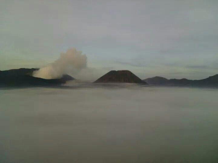 http://javaindoecotourism.com