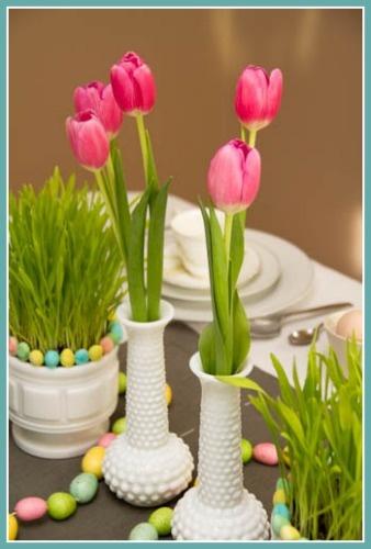 Tulips Tulips - love them!