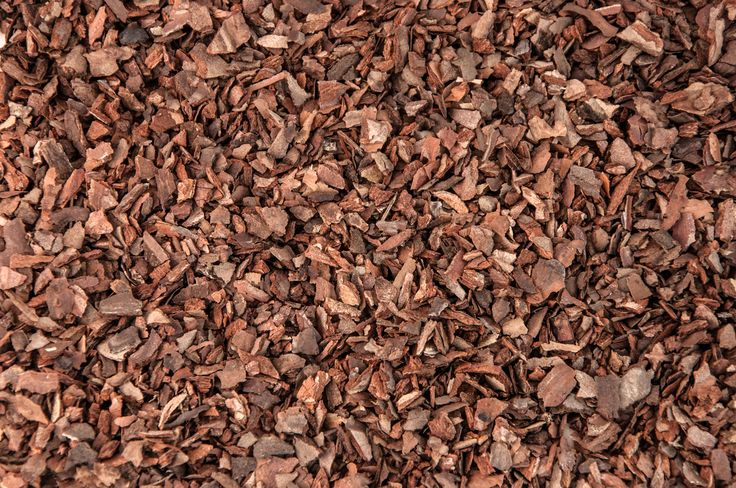 Properly placed organic mulch can benefit soil and plants in many ways. With so many choices of organic mulches on the market, it can be confusing. This article will discuss the benefits of pine bark mulch. Click here for more information.