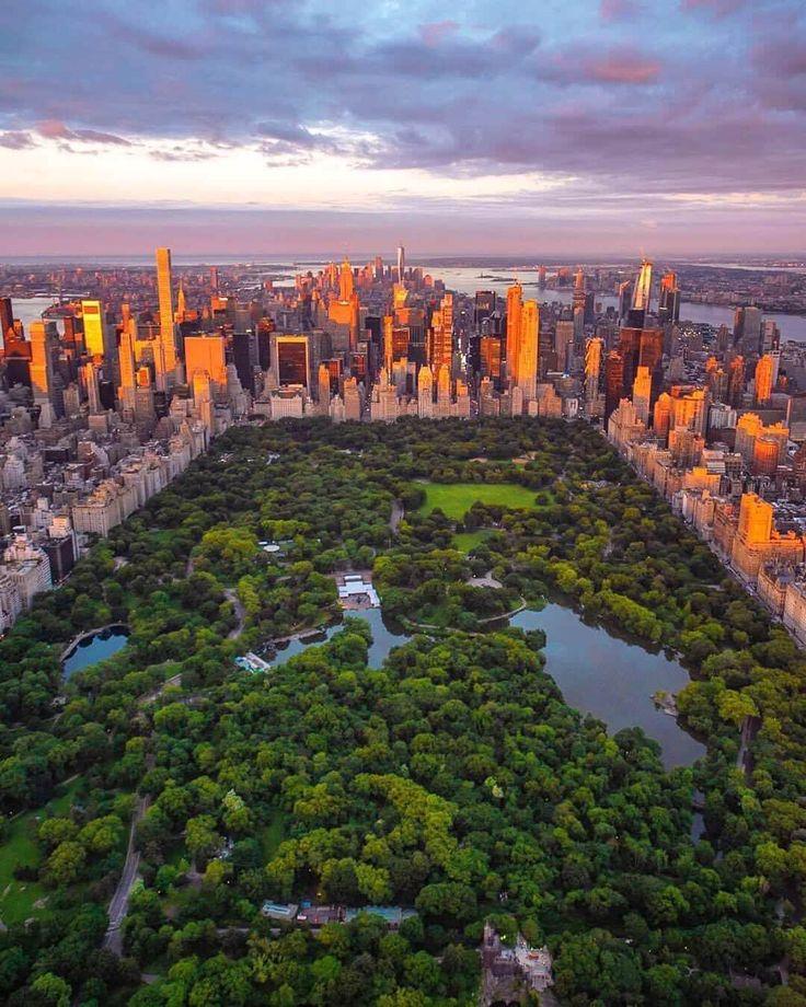 Central Park at dusk [1080 x 1350] New york city travel
