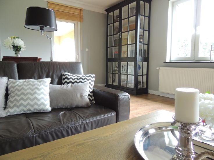 living room / bookcase glasdoor