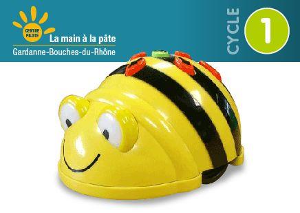 Bee bot au cycle 1