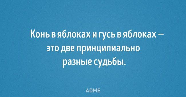 http://www.adme.ru/svoboda-narodnoe-tvorchestvo/20-otkrytok-so-strannym-yumorom-1160060/