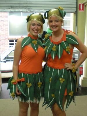 snugglepot and cuddlepie costume - Google Search