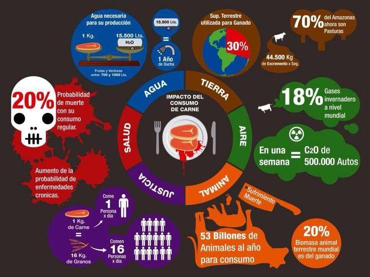 #Carne #Ecologismo #Consumismo #Hambre #Especismo