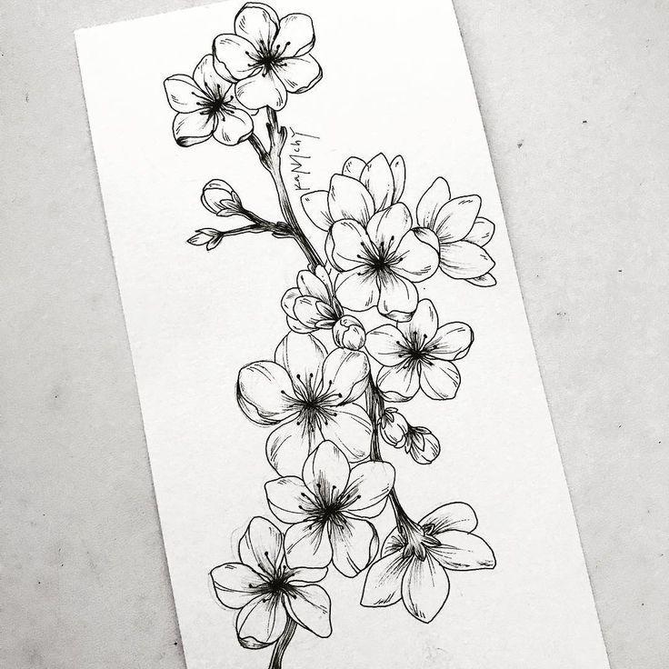 Bleistiftzeichnung – Blumen – #sakura # Blumen  #bleistiftzeichnungfixieren #ble… – Bleistiftzeichnung