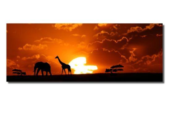 Afrikaanse zonsondergang 40x100cm
