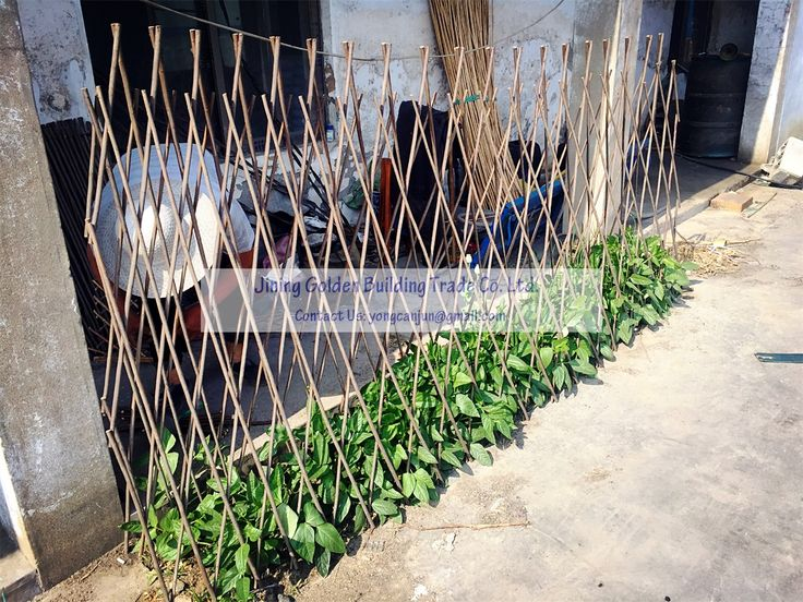 Hi, I would like to introduce our willow pea and bean frame, which is made of natural willow.  Please do not hesitate to contact me if you have queries.  Jining Golden Building Trade Co., Ltd. Qinghe Town Industry Development Zone, Yutai County, Jining City, China. Website: www.jnjzgm.com  Leslie Wong Managing Director Mobile phone: 86 15854629777 E-mail: yongcanjun@gmail.com yongcanjun@icloud.com Skype: seven.seven1985 WhatsApp: 86 15854629777 Viber: 86 15854629777 WeChat: 86 15854629777…