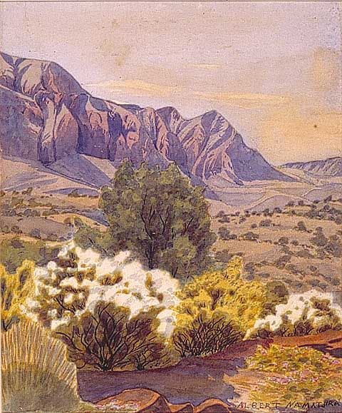 ALBERT NAMATJIRA  Australia 1902 - 1959   FLOWERING SHRUBS.   Watercolour on paper  Collection: Ngurratjuta Pmara Corporation Collection  Araluen Galleries Alice Springs  artistsfootsteps.com