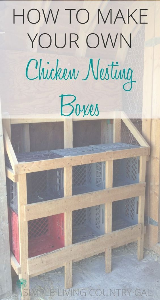 Make And Take Room In A Box Elizabeth Farm: Best 25+ Chicken Roost Ideas On Pinterest